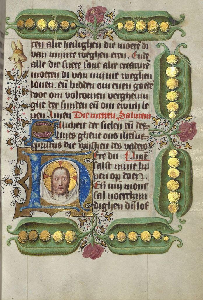 manuscript peas